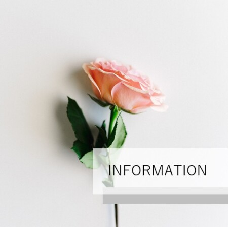 3/22(月)~3/31(水)の入店情報