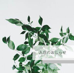 【3/1~3/7】入店情報★