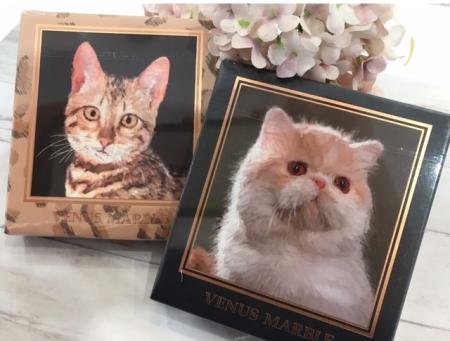 人気の猫シャドウ🐱新カラー